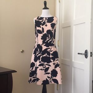 The Limited Navy & Peach floral dress 4 Tall